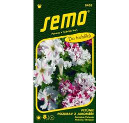 Petunia x hybrida / Petunie ´POZDRAV Z JAROMĚŘE´, bal. 50 pelet