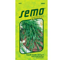 Artemisia dracunculus / Pelyněk kozalec ´Pelyněk´, bal. 0,08 g