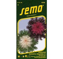 Brassica oleracea / Kapusta okrasná ´PEACOCK F1 MIX ´, bal. 20 s.
