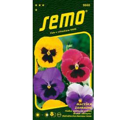 Viola x witr. / Maceška zahradní velkokvětá ´SMĚS S OKEM´, bal. 0,3 g