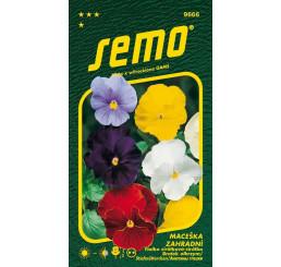 Viola x witr. / Maceška zahradní velkokvětá ´SMĚS BEZ OKA´, bal. 0,3 g