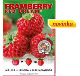 Fragaria Framberry® ´Red Dream´ / Malinojahodník, K9