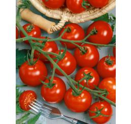 Rajče Picolino F1, přirozeně rezistentní, roubovaná rostlina, K12