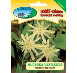 Passiflora capsularis / Mučenka vanilková, bal. 8 s.