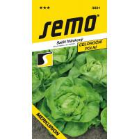 Salát hlávkový celoroční MERKURION, bal. 0,6 g