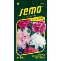 Petunia x hybrida / Petunie mnohokvětá DUO DOUBLE F1, bal. 30 pelet
