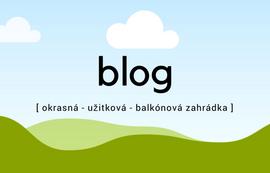 Blog Rostlinky.cz