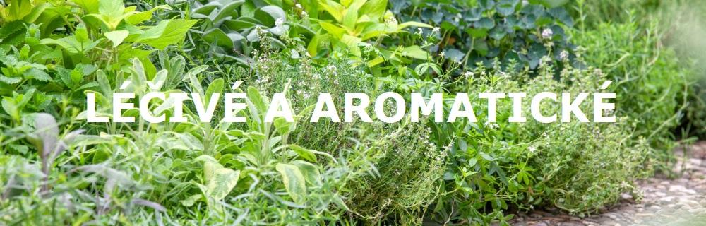 Léčivé a aromatické