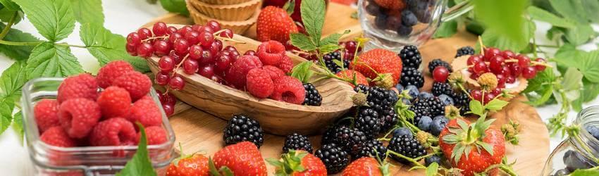 Pěstování v nádobě - drobné ovoce