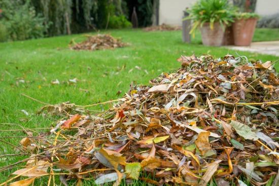 Využijte listí na zazimování balkonovek