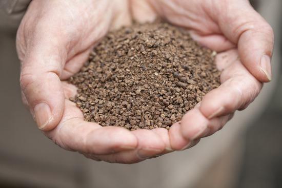 Hnojení a ochrana ovocnin