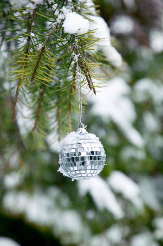 Vánoční stromek v zahradě