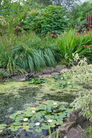 Voda v záhradě