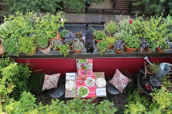 Balkon s bylinkami