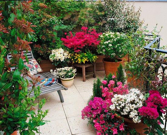 Jarní dekorace a barvy