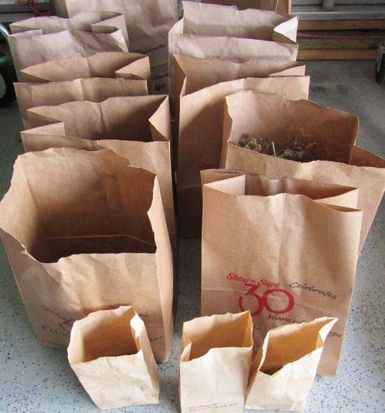 Uskladnění semen v papírových sáčsích